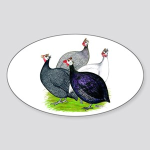 Four Guineafowl Sticker (Oval)