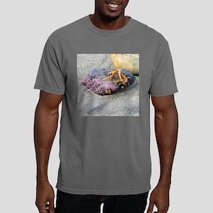5x5 Costa Brava1 Mens Comfort Colors Shirt