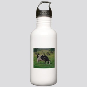 Holstein Milk Cow in Pasture Stainless Water Bottl