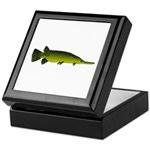 Longnosed Gar Keepsake Box