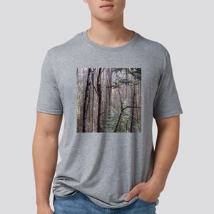 Scenery Of Trees Mens Tri-blend T-Shirt