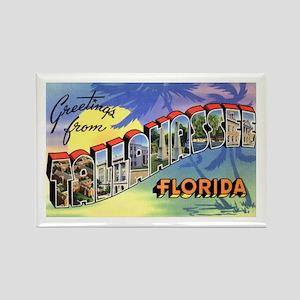 Tallahasse Florida Greetings Rectangle Magnet
