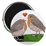Robin red breast bird love Magnet