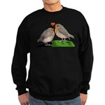 Robin red breast bird love Sweatshirt (dark)