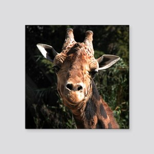 "Helaine's Smiling Giraffe Square Sticker 3"" x 3"""