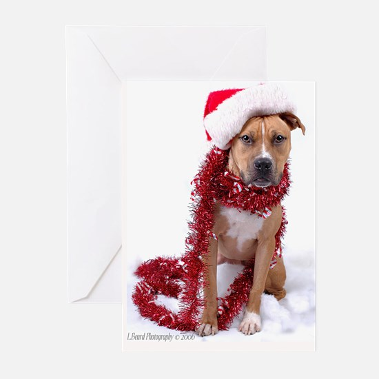 Santa_Proby_5x7 Greeting Cards
