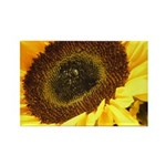 Yellow Sunflower Rectangle Magnet