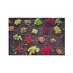 Flower Bed Rectangle Magnet