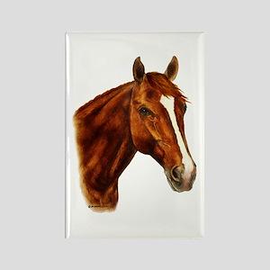 Chestnut Horse Rectangle Magnet