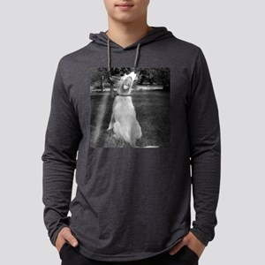 Border Collie Puppy Mens Hooded Shirt