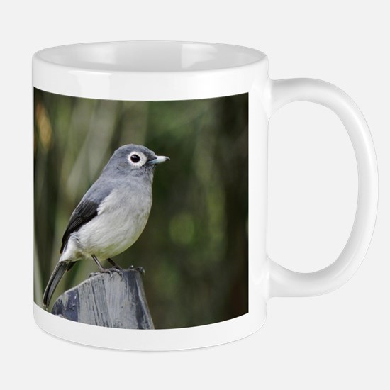 white eyed slaty flycatcher kenya collection Mug