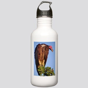 nubian vulture kenya collection Stainless Water Bo