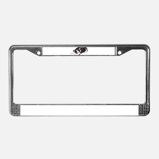Husky Puppy License Plate Frame