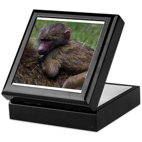 baboon on back kenya collection Keepsake Box