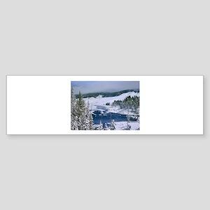 YELLOWSTONE Sticker (Bumper)