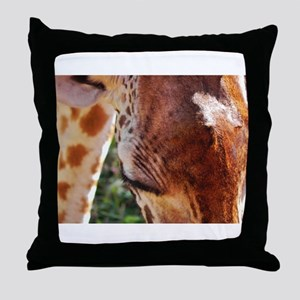 rothschild giraffe closeup kenya collection Throw