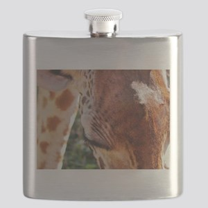 rothschild giraffe closeup kenya collection Flask