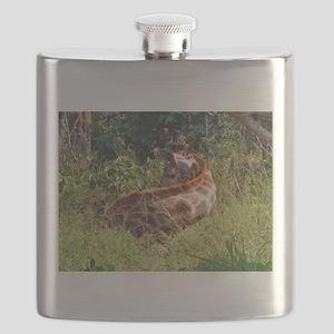 rothschild giraffe in grass kenya collection Flask