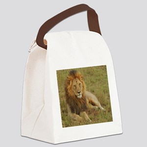 male lion kenya collection Canvas Lunch Bag