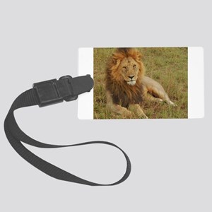 male lion kenya collection Large Luggage Tag
