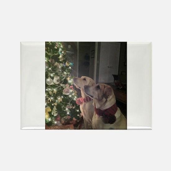 Labrador Holiday Rectangle Magnet