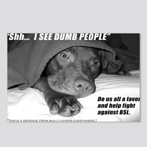 American Pit Bull Terrier Postcards (8)