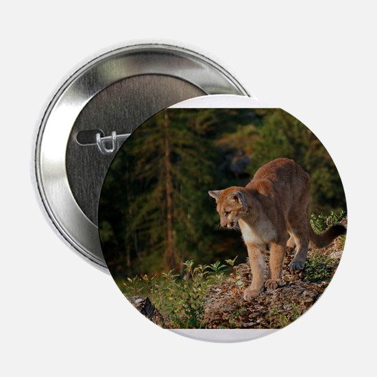 "Cougar 1 2.25"" Button"