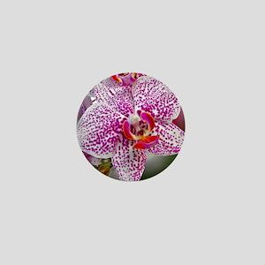 Orchid World Mini Button
