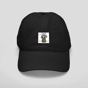Weimaraner Black Cap with Patch