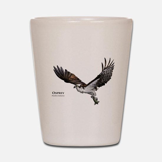 Osprey Shot Glass