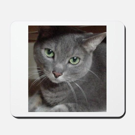Gray Cat Russian Blue Mousepad