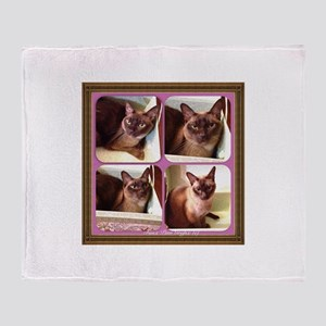 Champagne Burmese Box Cat x4 Throw Blanket