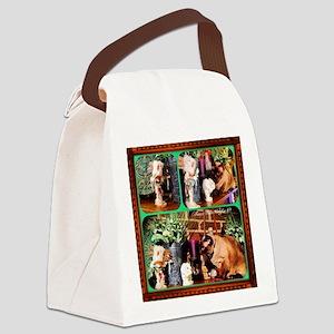 Cat Meets Kachina Triptych Canvas Lunch Bag