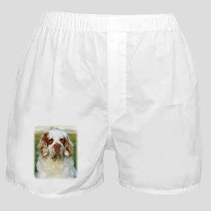 Clumber Spaniel AF015D-125 Boxer Shorts