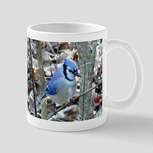Beautiful BlueJay Mug