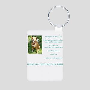 Bull Breed Education Aqua Print Aluminum Photo Key