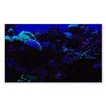 Dark Coral Sticker (Rectangle 50 pk)