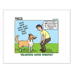 Dog Care Posters