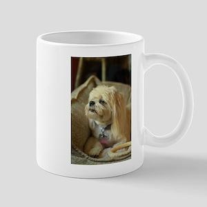 indoor dogs Mugs
