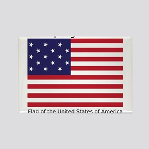Star-Spangled Banner (Light) Rectangle Magnet