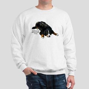 Berner Rug Pose - Sweatshirt