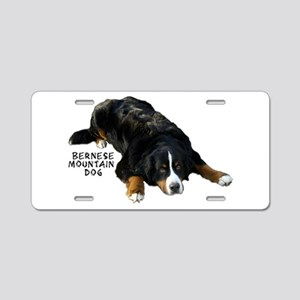 Berner Rug Pose - Aluminum License Plate