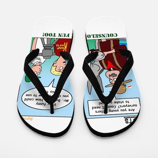 Surveying Flip Flops
