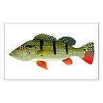 Speckled Pavon Sticker (Rectangle 50 pk)