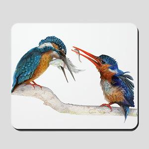 Malachite Kingfishers - It Still Counts Mousepad