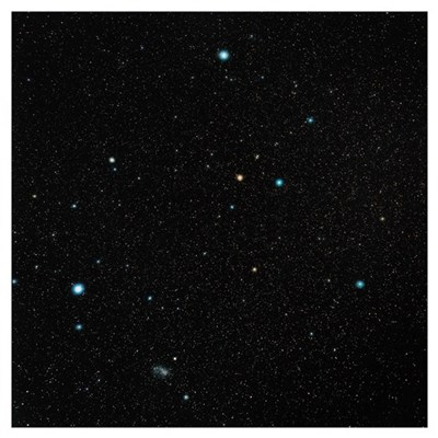 Grus constellation Poster