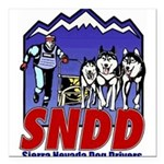 "snddlogo98big Square Car Magnet 3"" x 3"""
