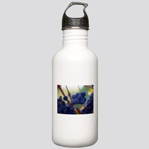 Little Bunches (Grapes) Stainless Water Bottle 1.0