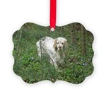 Clumber Spaniel Picture Ornament
