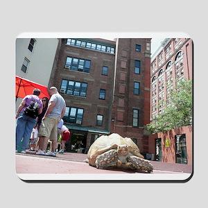Sulcata Tortoise on the Loose Mousepad